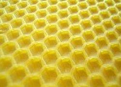 """Pomoc dla pszczelarzy -""""Program poprawy warunków fitosanitarnych rodzin pszczelich poprzez wspracie finsnowe zakupu węzy pszczelej"""""""